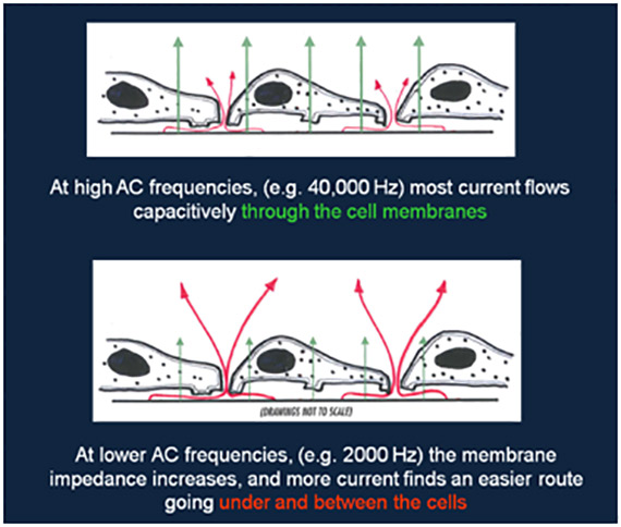AC frequency